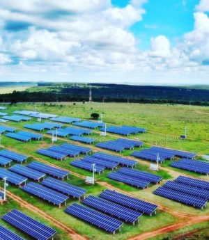 Cooperativas e fazendas solares são alternativas para alto custo da energia elétrica