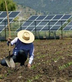Energia solar fotovoltaica no setor rural ultrapassa R$ 1,2 bilhão em investimentos no Brasil