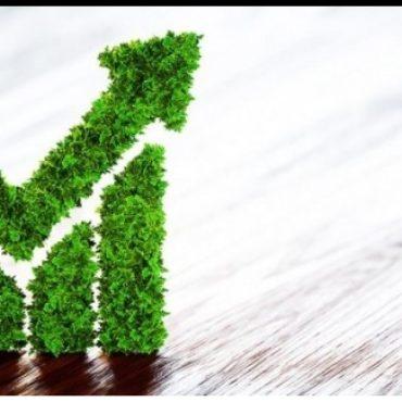 Projetos verdes dão sinais de resiliência com emissões de green bonds